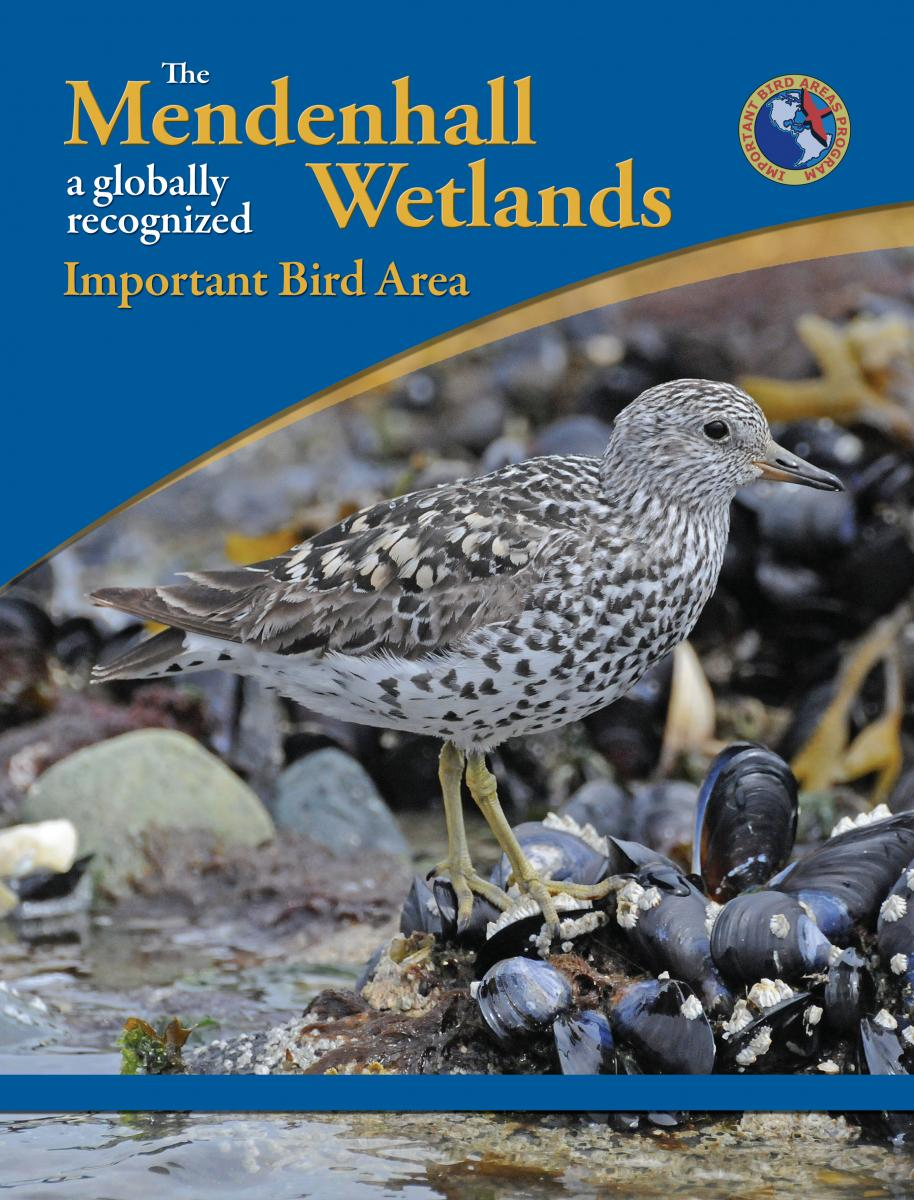 The Mendenhall Wetlands A Globally Recognized Important Bird Area book